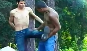 Llight-skinned stud Wellington gives some capoeira lessons his blackamoor Brazilian affiliate Lindberg Sisso in the coppice